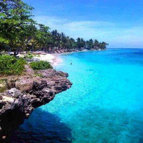 Pulau Barito , Papua