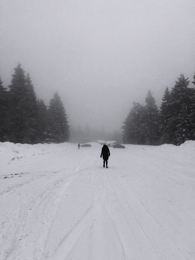 A nearly lone walker! Snow Snow ❄ Snowing Germany