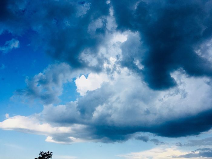 Sky Cloud - Sky Sky Low Angle View Beauty In Nature Blue Scenics - Nature Nature Tranquility Tranquil Scene No People Day Outdoors Cloudscape Idyllic Backgrounds Majestic Heaven Silhouette Meteorology