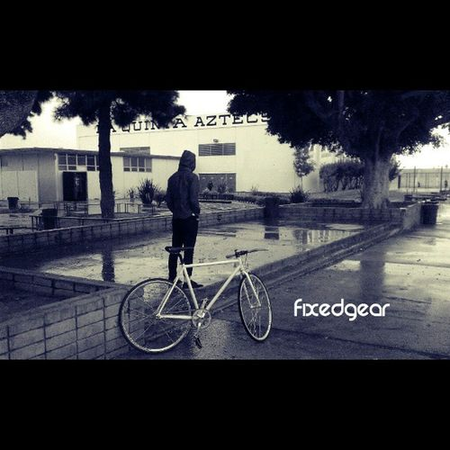 When it rains. #fixedgear #citygrounds #rain #gray #chill #instadaily #photography #instafixie Chill Rain Photography Fixedgear Gray Instadaily Instafixie Citygrounds