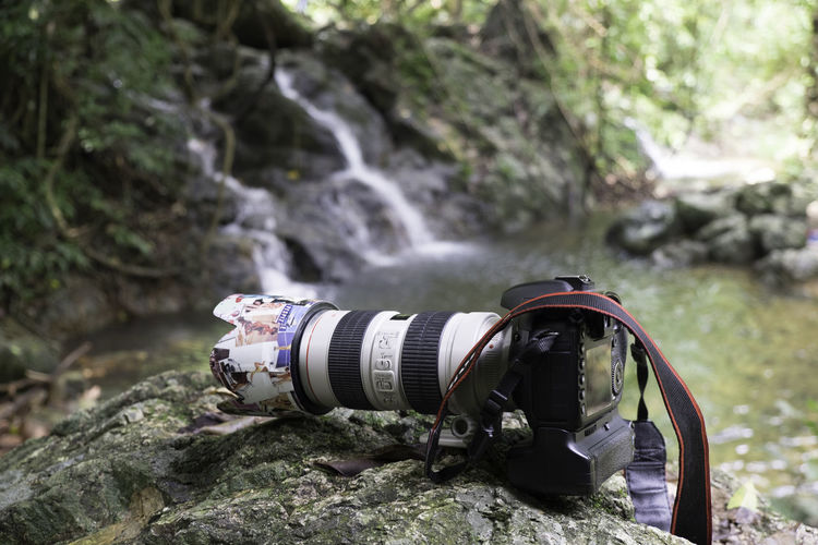Man photographing on rock in forest