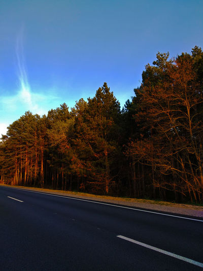 Road by trees against sky during autumn