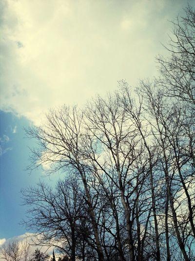 What A Beautiful Day♥ Taking Photos Enjoying Life