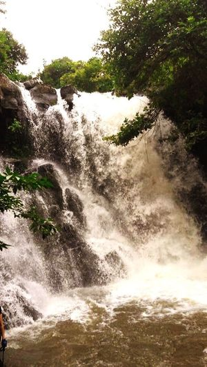 Tranquil Scene Scenics Mauritius Island  Freshness Tranquility Mauritius Nature Waterfall Water Motion Nature River Beauty In Nature Rock - Object Rapid No People Outdoors Forest Plant Power In Nature Travel Destinations Day Tree Freshness Sky