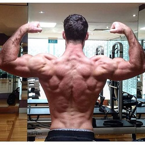 Old picture, haven't got an up to date back pic atm but wanted to post my back session from today for anyone to give a go.... Today's pull session: - weighted neutral grip pull ups 4 x 6 - low row 4 x 10-12 - natural grip lat pull downs 4 x 10-12 - machine row 4 x 10-12 - reverse machine flys 4 x 12 - barbell curls 4 x 12 - hammer grip rope curls 3 x 12 (triple drop set on last set) I'm using more neutral grips for my overhead movements atm as in finding more emphasis on my lats and a great stretch! If you're wondering why there are no deads or bent over rows it's because I have a herniated disk and don't perform those movements anymore! You can get by without! Backday Cantwaittocutagain