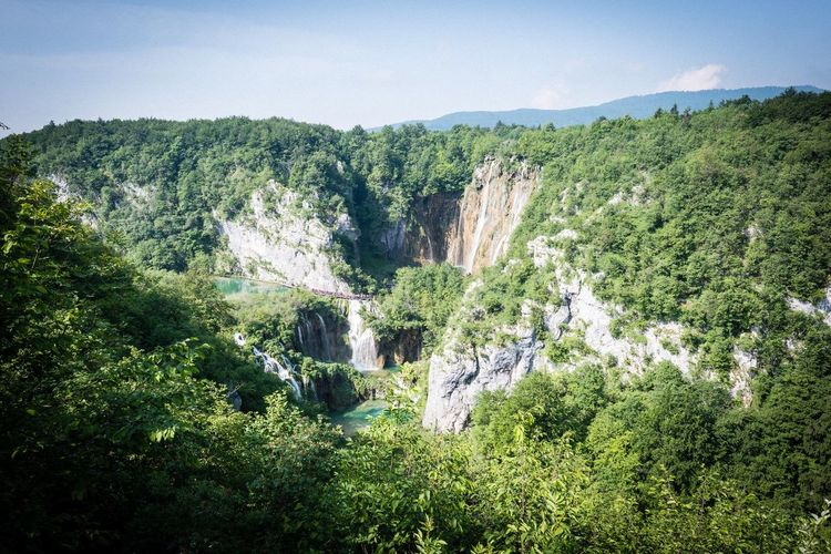 Plitvice lake Waterfall Plitvice National Park Plant Growth Beauty In Nature Tree Green Color Tranquility Scenics - Nature Nature Landscape
