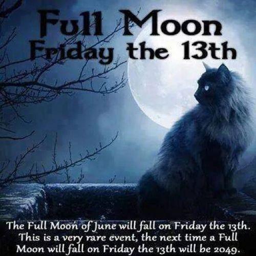 Frightdaynight Fridaythethirteenth HappyFriday Blackcats blackcat goodluck