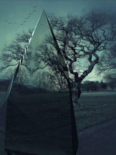 Abstract lands EyeEm Birds Birds Black&white Dark Art Dark Photography Surrealism Darkness Three In The Dark Triptych Series