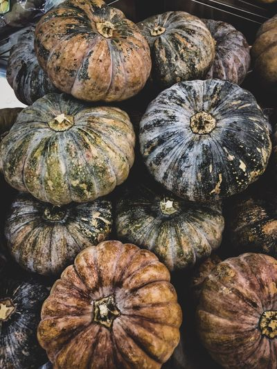 Pumpkin for your background or wallpaper on your phone. Black Borneo Freshness Raw Food No People Close-up Market Pumpkin Backgrounds Full Frame High Angle View Large Group Of Objects Abundance For Sale Group Of Objects Retail  First Eyeem Photo