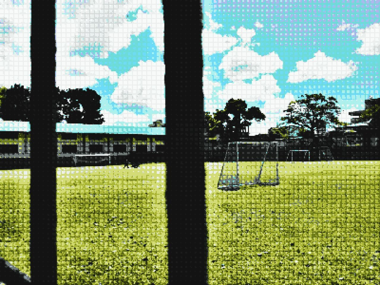 grass, field, playing field, sport, day, sunlight, tree, soccer field, green color, no people, growth, outdoors, soccer, shadow, nature, sky, scenics, goal post, beauty in nature