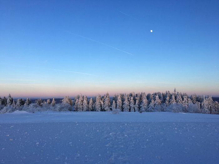 Sky Winter Snow