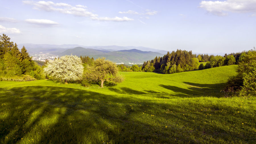 landscape Activity Beauty In Nature Cloud - Sky Day Environment Golf Grass Green Color Land Landscape Mountain Mountain Peak Mountain Range Nature No People Non-urban Scene Plant Rolling Landscape Scenics - Nature Sky Tranquil Scene Tranquility Tree