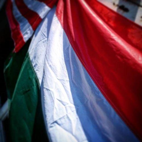 Tonight is the night Hungary Hungaryromania Flag Magyar Magyarország Magyarroman Magyarroman Zászló Football Match Ujpest újpestfc Game Honor Home Csakaromanokatodavissza