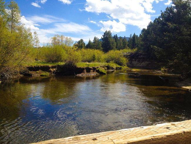 Bridge over the Truckee  River in South Lake Tahoe . Beautiful Weather Forest Meadow