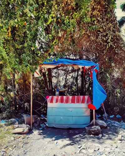 Sunny Afternoon Outdoors Road Addis Ababa Ethiopia Randomshot Phonecamera Eyemphoto PhonePhotography Nature Colors Colorful