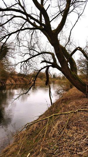 Lippe im Herbst Lippe Lippe Fluss Ruhrgebiet Fluss Herbst Flusslandschaft Waltrop Datteln Lupia Showcase June