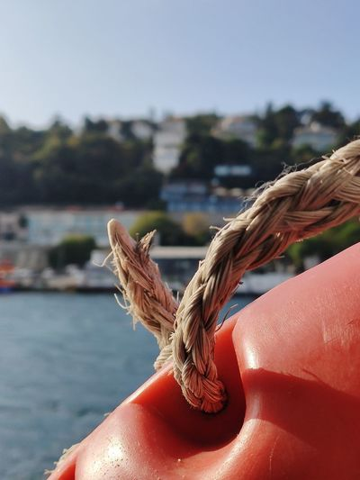 Close-up of hand holding rope against sea