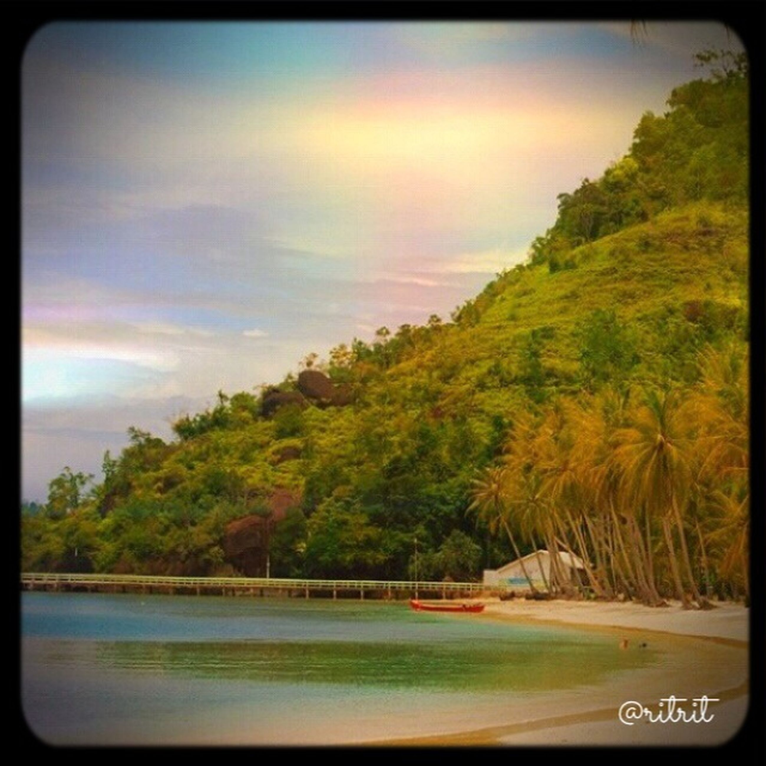 tree, transfer print, water, auto post production filter, sky, tranquil scene, tranquility, scenics, beauty in nature, nature, sea, beach, growth, palm tree, idyllic, cloud - sky, river, outdoors, green color, shore