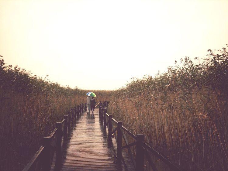 View EyeEm Nature Lover Taking Photos Rainy Days Vanishing Point