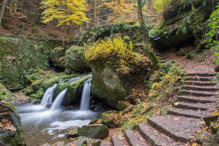 Autumn Beauty In Nature Bridge Brücke Flowing Flowing Water Herbst Langzeitbelichtung Long Exposure Müllerthal Nature Outdoors Rock - Object Schiessentümpel Wasserfall Water Waterfall