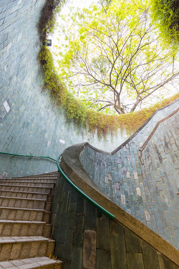 Spiral staircase of underground crossing in tunnel at Fort Canning Park, Singapore. Architecture Background Beautiful Canningcircle Crossing Environment Floral Fort Canning Fresh Garden Giant Grass Green Leaf Nature Nobody Outdoor Outside Park Peaceful Plant Rock Scene Singapore Spiral Staircase Texture Travel Tree Tunnel Underground Wall