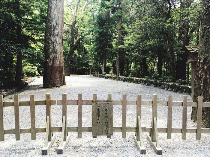 Ise Shrine Noentry Forest 伊勢神宮 進入禁止 森林 Tomの見た世界