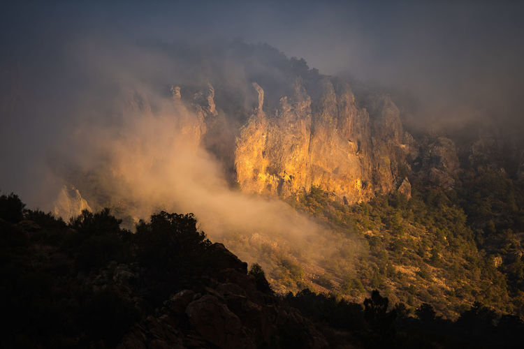 Scenic view of forest against sky in big bend national park - texas