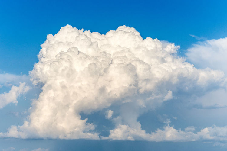 Nature Plants Summer Italy Tuscany Cloud - Sky Sky Beauty In Nature Scenics - Nature White Color Cloudscape Tranquility Tranquil Scene Blue No People Idyllic Day Fluffy Outdoors Heaven Backgrounds Low Angle View Softness Meteorology