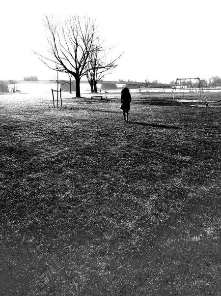 Tree Black And White One Person Bridge Lost World