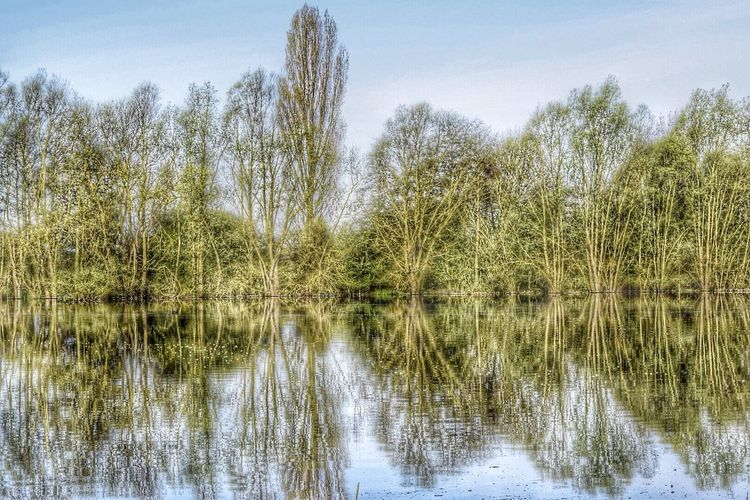 Nature_collection EyeEm Best Shots Water Reflections Hdr_Collection