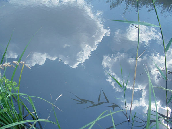 Reflection in the Lake Beauty In Nature Blue Close-up Clouds Clouds And Sky Mirror Nature Non-urban Scene Reflection Sky Sunny Water