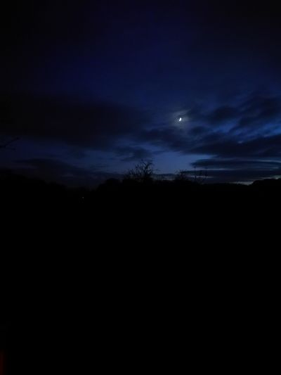 Moon Night Sky Astronomy Star - Space Beauty In Nature Space Silhouette Moonlight Space And Astronomy Nature Scenics Tranquil Scene Dark Star Field Outdoors No People Tree