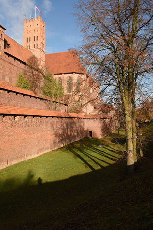 Malbork Castle Architecture Autumn Black Cross Knights Blue Sky Blue Sky And Clouds Building Exterior Built Structure Castle Day Gothic Malbork Mediaeval Medieval Middle Ages No People Outdoors Poland Red Brick Red Roofs Sky Teutonic Knights Tower Tree