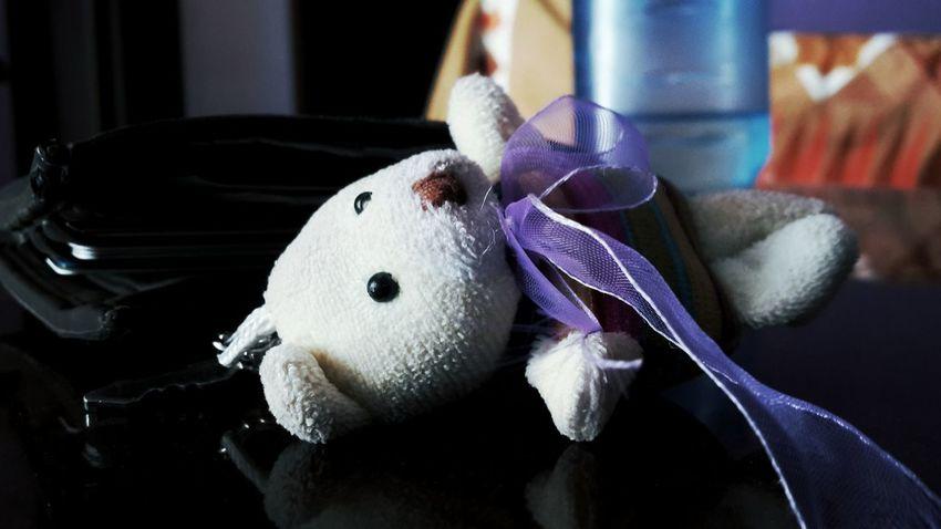 Teddybear Teddy Teddy Bears Teddy<3 TeddyBears Teddies Keychain Keychains  Keychain Collection Keychaincollection