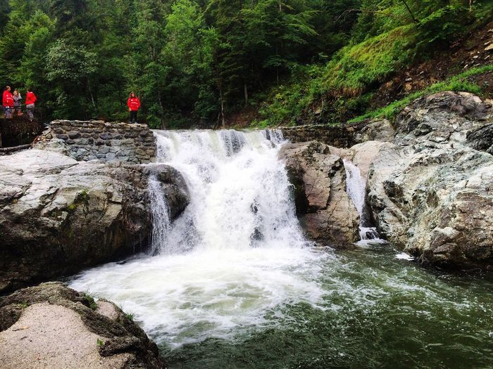 Waterfall Water Nature Rock - Object Scenics Beauty In Nature Tree Motion Outdoors No People Adventure Day