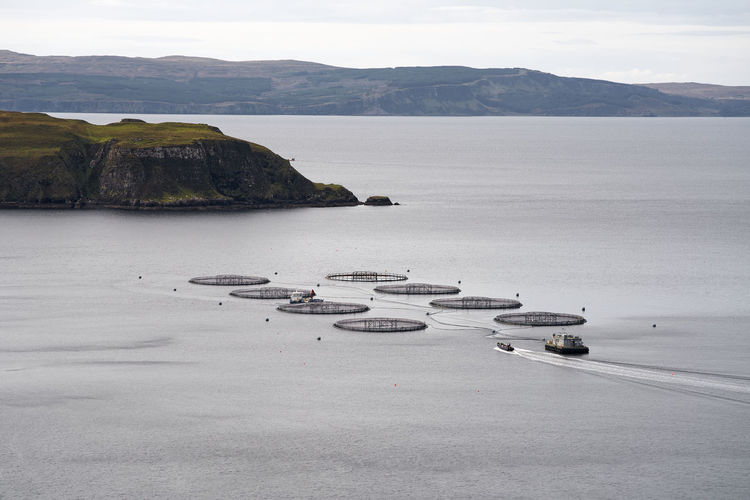 Aquaculture fish farm with approaching boat  in scotland