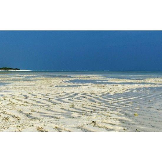 Lakshadweep Whitesand Intertidal Naturepatterns
