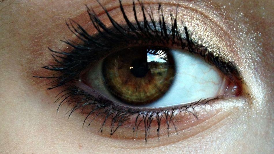 Eye Big Brown Eyes Makeup Brown Eyes