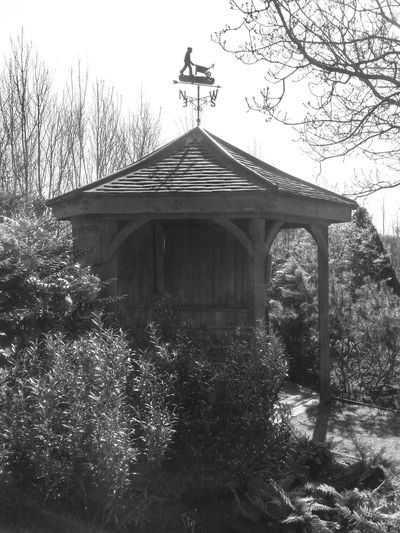 Black & White Black And White Gazebo Weather Vane Garden Photography Trees And Bushes