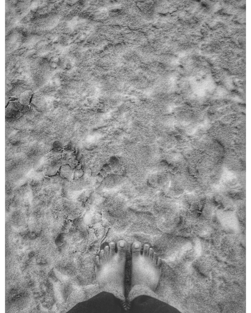low section, sand, human body part, real people, one person, human leg, high angle view, day, directly above, outdoors, nature, beach, standing, water, close-up, people, adult, adults only