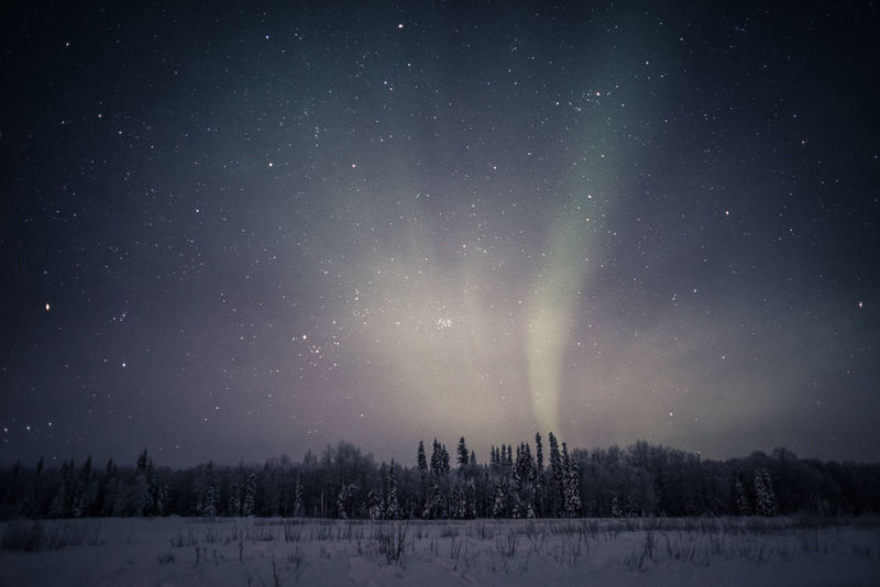Aurora Aurora Borealis Northern Lights Peace Quiet Travel Winter Alaska Astronomy Astronomy, Astrophotography Celestial Environment Fairbanks Landscape Mystery Peaceful Sky Space And Astronomy Starry Sky Thoughts Wilderness Winter Wonderland