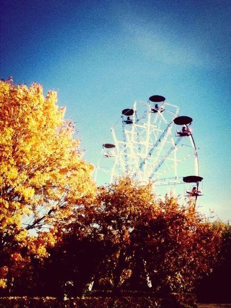 самая красивая осень в моей жизни.