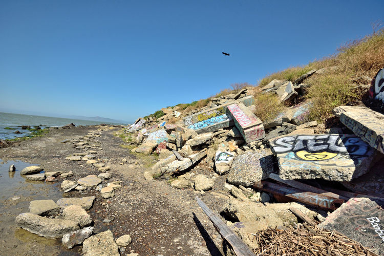 The Albany Bulb 13 Albany, Ca. Waterfront Peninsula Former Landfill San Francisco Bay Eastern Shore Dump For Contruction Materials Concrete Debris A Home For Urban Artists An Anarchical No Man's Land Outsider's Art Sculptures Out Of Waste Murals Graffiti Artists The Bulb Bum's Paradise Movie 2003 Shoreline Rough And Rugged Landscape Bird In Flight Landscape_photography Landscape_Collection