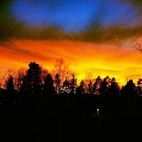 Coolt tog med nikonen Nikon Nikond300 Like Sun sol fotograf followme follow