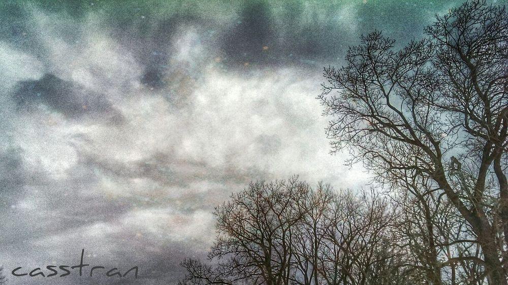 Slip Sliding Away Shootermag Hugging A Tree Sledding Sky_collection