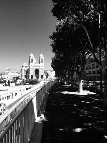 Marseille Architecture Built Structure Building Exterior City Tree Sky Plant Nature Transportation Street The Way Forward Building Direction Day Railing Mode Of Transportation No People Clear Sky Outdoors Diminishing Perspective