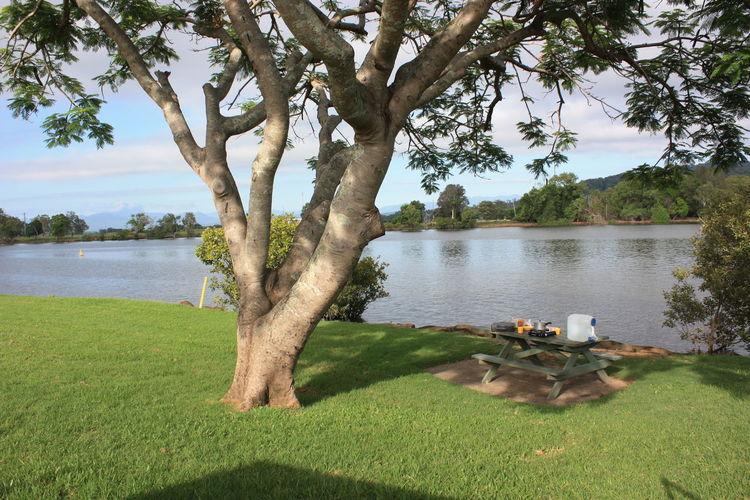 Riverside River Picknick Camping Breakfast Breakfeast Outside Backpacking Tree At Lake