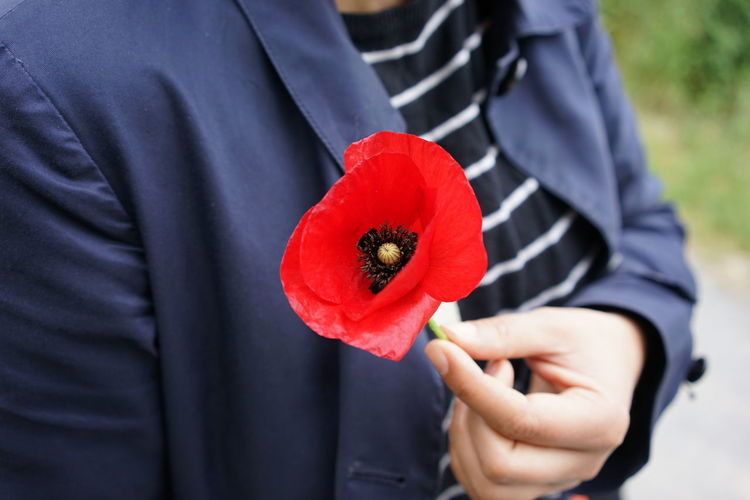 Midsection of man holding red flower