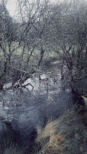 Landscape River Fresh Air Landscape_Collection