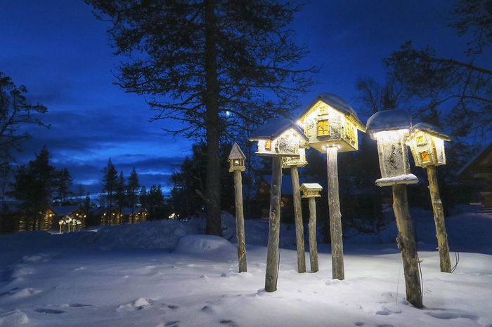 Blue Hour Finland House Igloo Resort Lapland Light Lights Saariselkå Snow Street Photography Streetphotography Travel Traveling Winter Wood Blue Blue Sky Sky Shades Of Winter